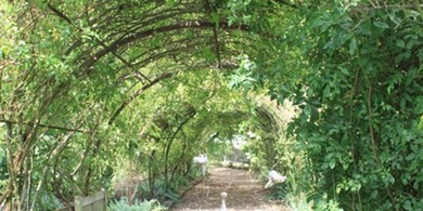 De tuin van Marie