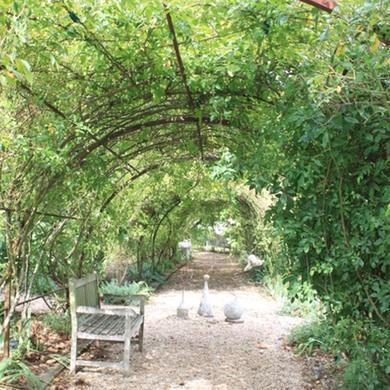 jardindemarie