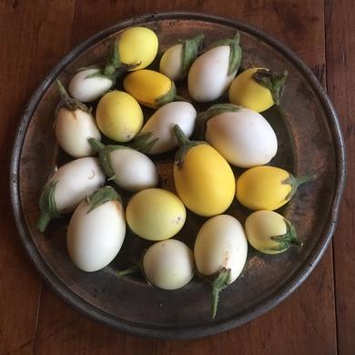 Thaise aubergines